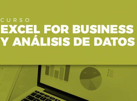 Excel for Business y análisis de datos