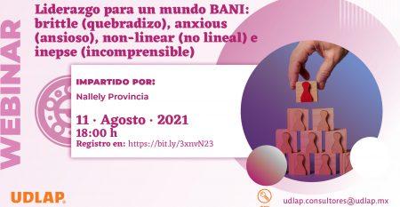 2101260_WebinarLiderzgo_Pantalla